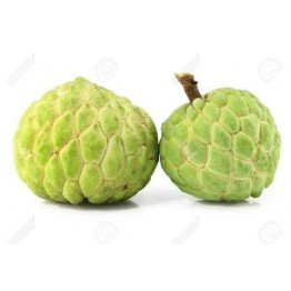 Custard Apple Fruits