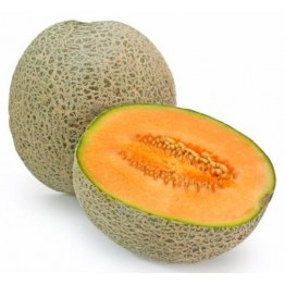 Musk Melon Fruits