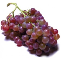 USA Grapes Fruits