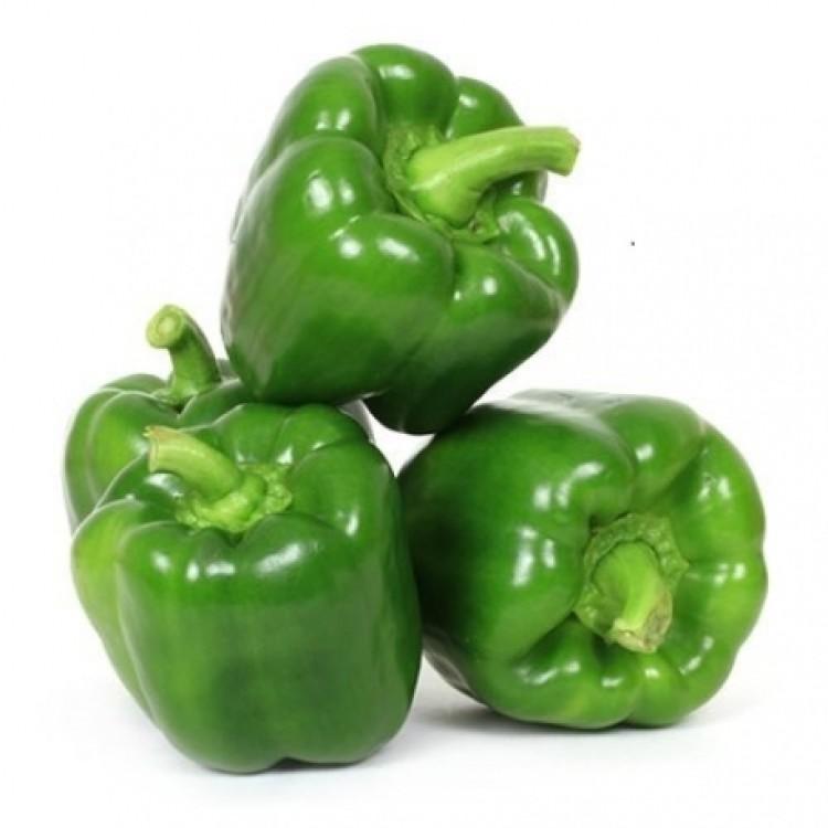 Capsicum Shimla Mirch Bell Pepper
