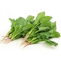 Palak/Spinach